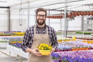 Portrait of young adult male worker carrying small potted flower in tray at greenhouse